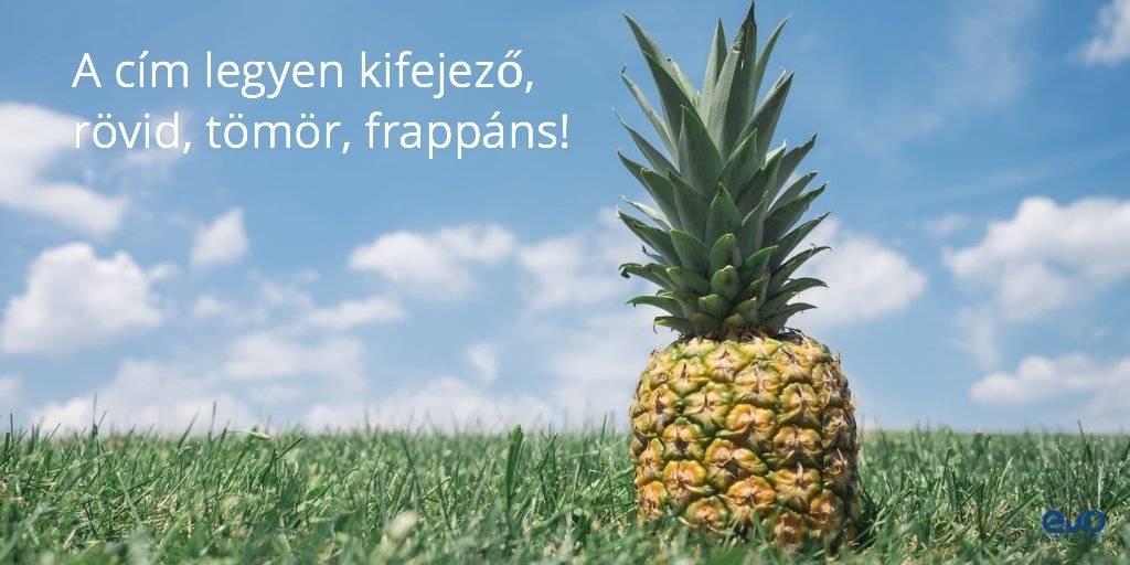 Ananász a réten: ilyen kifejező legyen egy cím