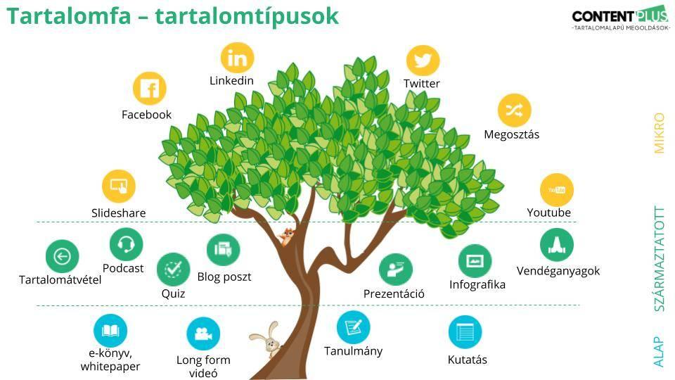 Tartalomfa - tartalomtípusok